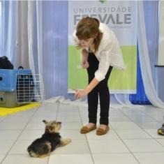 Terapia Assistida por Cães 3