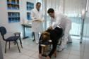 Clínica Escola de Quiropraxia_05