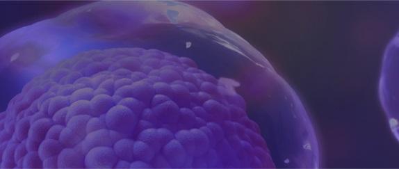 Banner de topo - Espaço Feevale - Medicina 2018.02