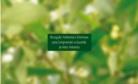 Imagem de referência Percepção Ambiental e Diretrizes para Compreender a Questão do Meio Ambiente