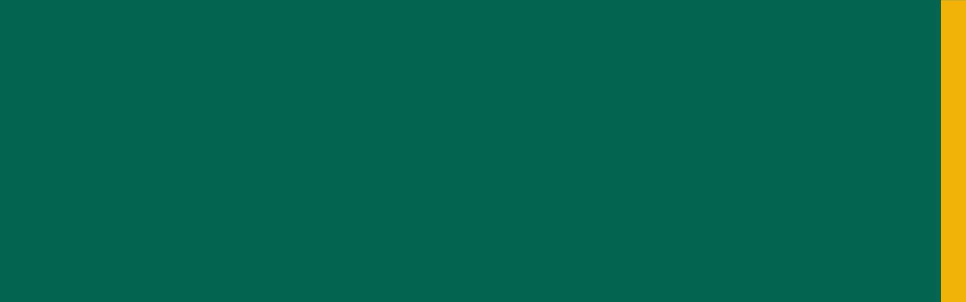 Banner de topo home - Vestibular Feevale