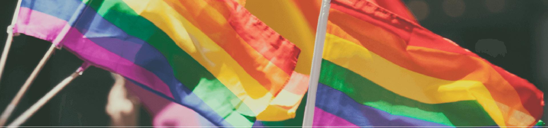 Banner de topo - Gênero e Sexualidade: tudo o que você precisa saber para começar a entender