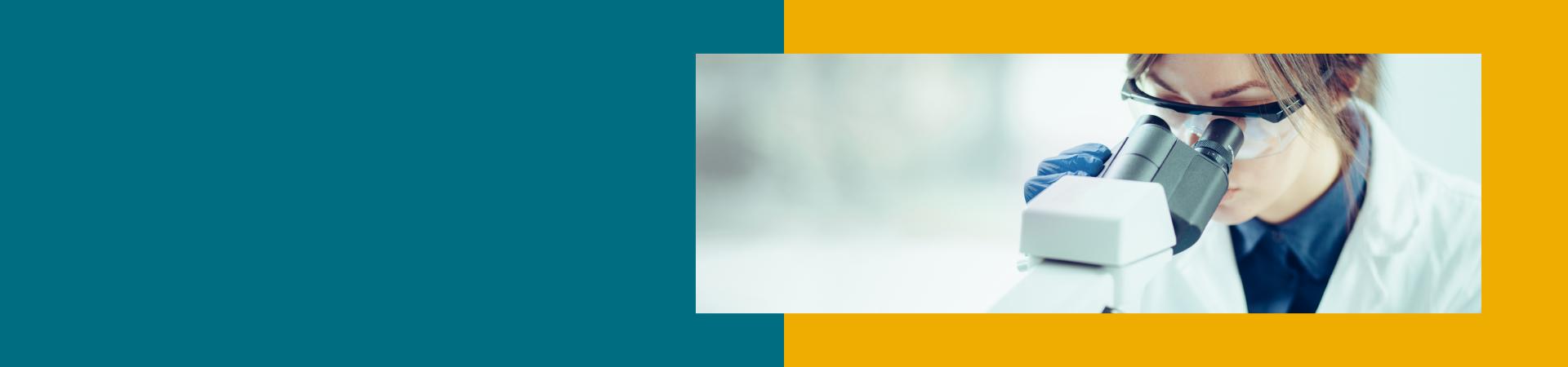 Banner de topo interno - Mestrados e Doutorados