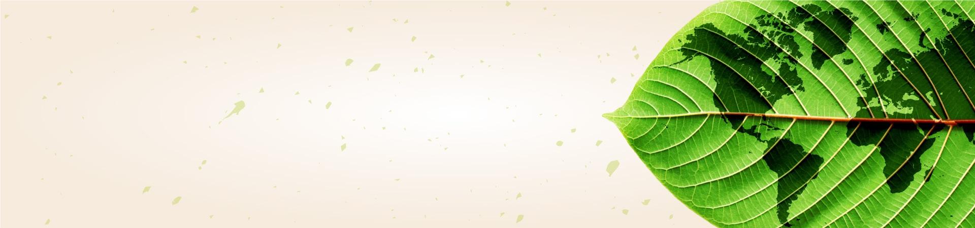 Banner Topo - Semana do Meio Ambiente