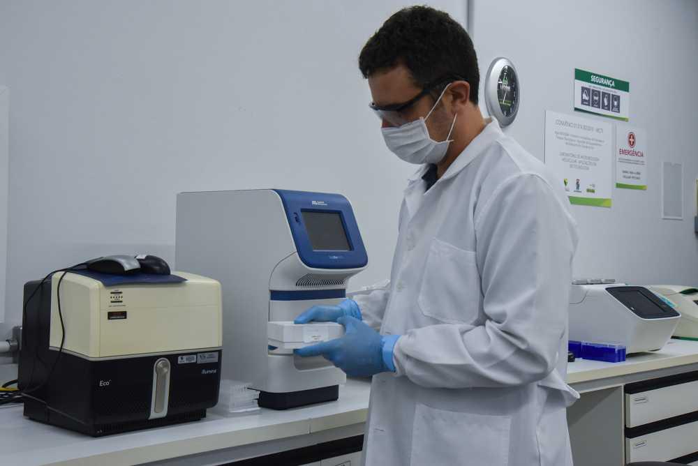 Spilki no laboratório