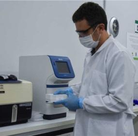 Spilki_laboratório