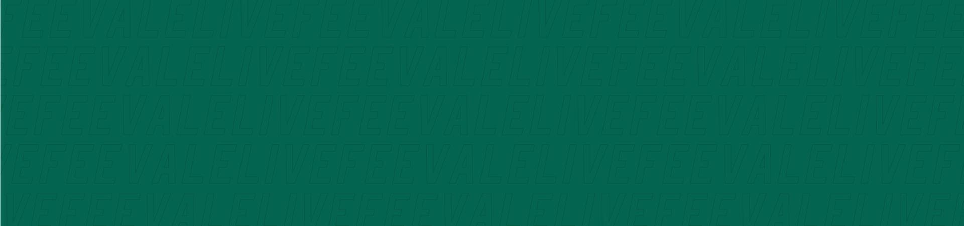 Banner de topo - Feevale Live