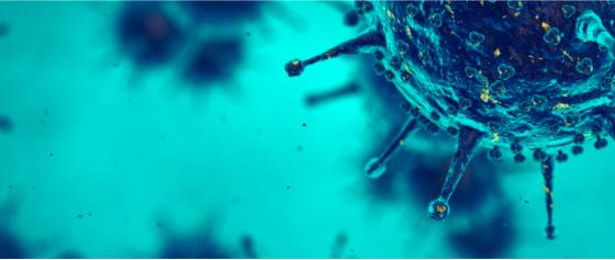 Banner de topo - Mestrado Acadêmico em Virologia