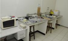Laboratório de Genética e Biologia Molecular