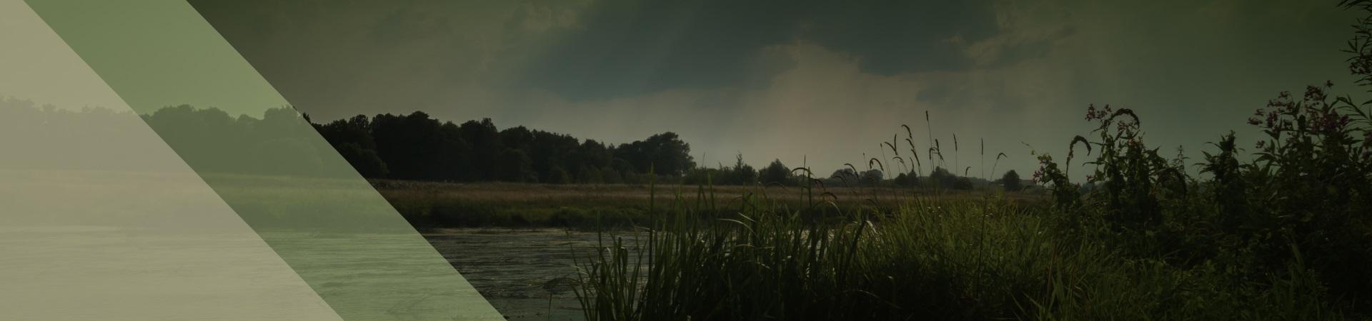 banner de topo - Seminário de meio ambiente