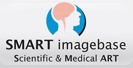 Banner central - SMART Imagebase large