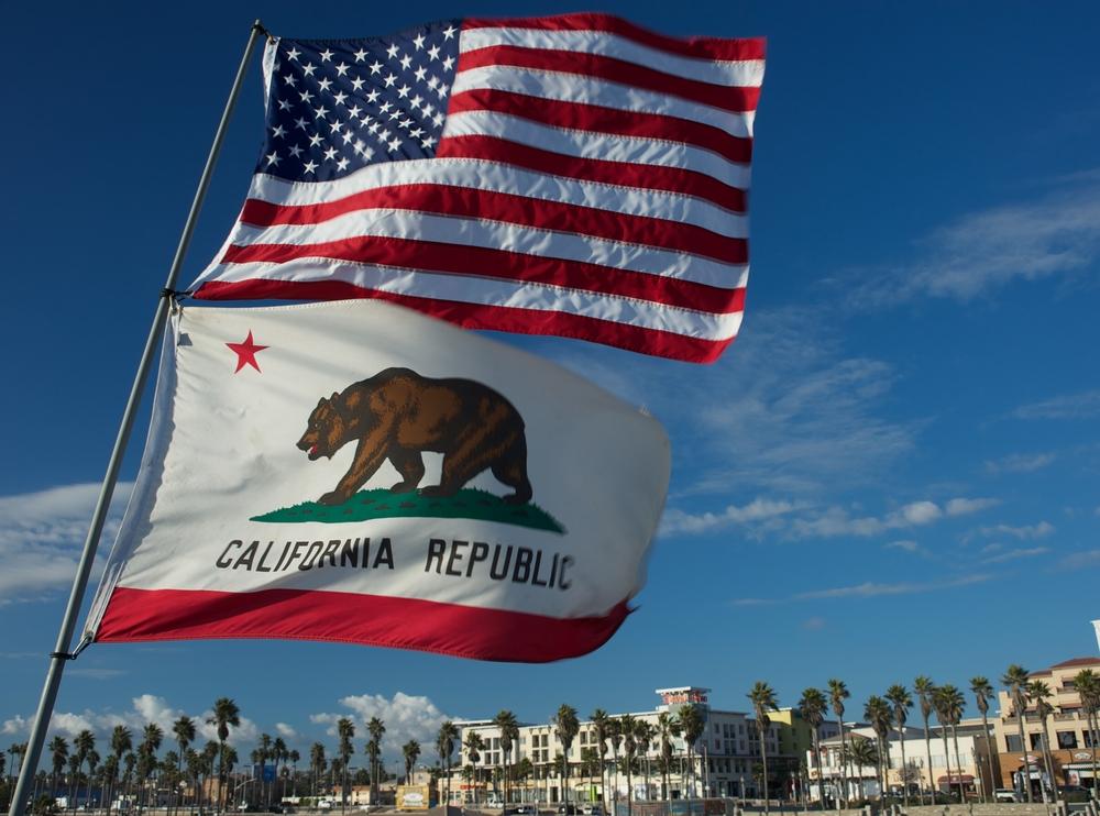 bolsas california