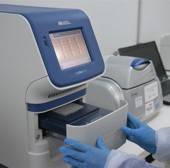 lab microbiologia