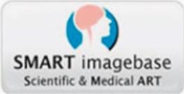 banner lateral -  SMART - Vídeos e Animações Médicas